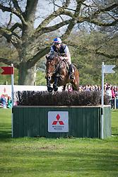 Aister Nicolas (FRA) - Piaf de B'Neville <br /> Mitsubishi Motors Badminton Horse Trials - CCI4* - Badminton 2013<br /> © Hippo Foto - Jon Stroud