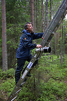 Peter Cairns climbing ladder to photograph Great grey owl (Strix nebulosa) in boreal forest, Oulu, Finland.
