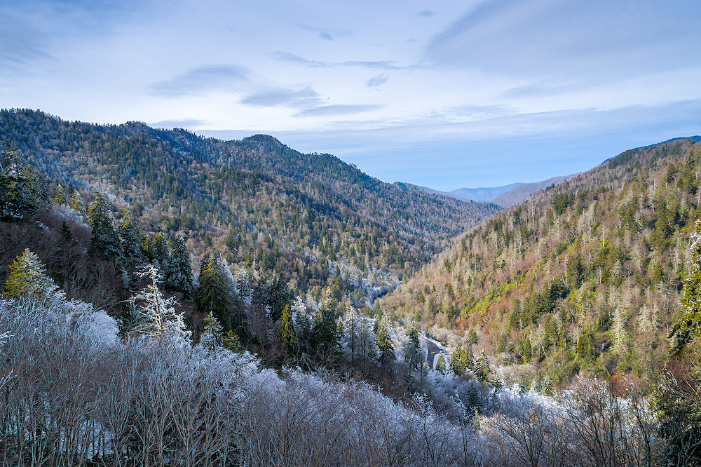 Scene from the Smoky Mountains National Park