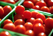 Close up, selective focus photograph of a container of Red Currant tomatoes