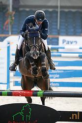 Jespers Mark (NED) - Zelote VDL<br /> KWPN Paardendagen Ermelo 2010<br /> © Dirk Caremans