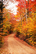 Image of a road the White Mountains National Forest in the fall, New Hampshire, American Northeast by Randy Wells