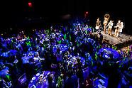 BRIC Arts Gala | Selects I
