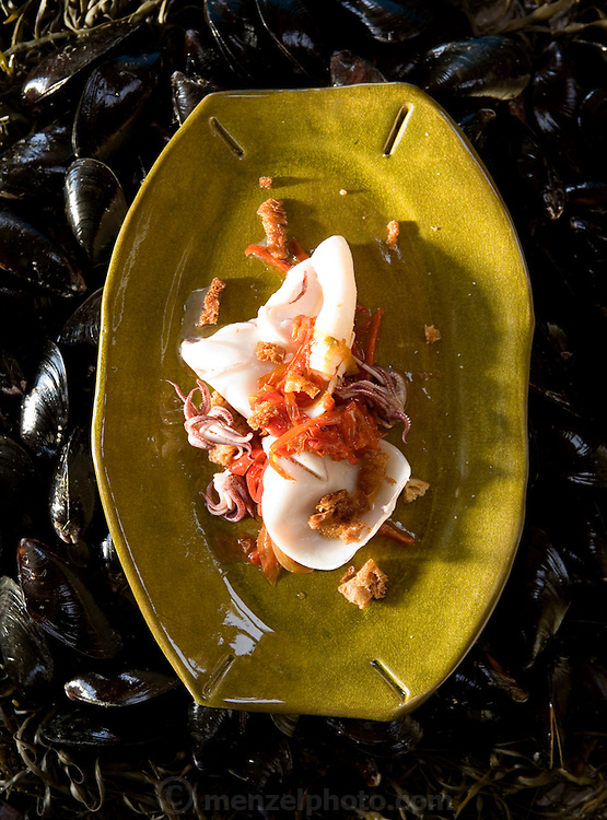 Fresh squid dish prepared by Cindy Pawlcyn for her Go Fish restaurant in the Napa Valley, CA