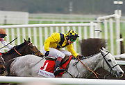 RICHARD JOHNSON RIDING ROOSTER BOOSTER IN THE TOTE GOLD TROPHY HURDLE RACE AT NEWBURY RACECOURSE T0 TAKE SECOND PLACE.