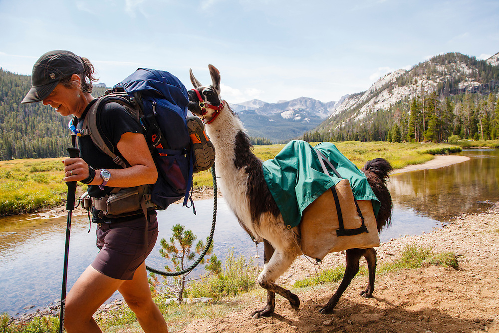 Julie Daily and Dubois the llama on the North Fork Trail, Sanford Park, Wind River Range, Wyoming.