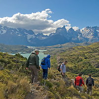 Hikers descend a hill above Lake Pehoe, with a view of the Horns of Paine  and the Towers of Paine in Torres del Paine National Park, Chile.