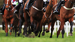 Detail of horses' legs during the Ballymore Novices' Hurdle during Ladies Day of the 2018 Cheltenham Festival at Cheltenham Racecourse.