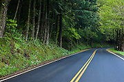 Scenic Highway in the Columbia River Gorge, Oregon.