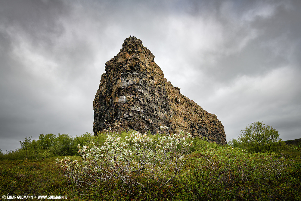 Asbyrgi canion in Northeast-Iceland.