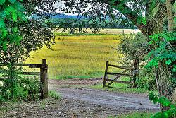 Entrada de uma fazenda produtora de arroz em Vera Cruz. FOTO: Jefferson Bernardes / Preview.com