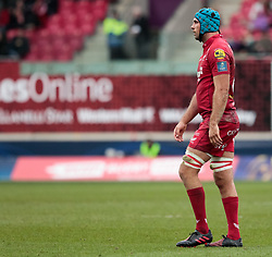 Scarlets' Tadhg Beirne<br /> <br /> Photographer Simon King/Replay Images<br /> <br /> EPCR Champions Cup Round 3 - Scarlets v Benetton Rugby - Saturday 9th December 2017 - Parc y Scarlets - Llanelli<br /> <br /> World Copyright © 2017 Replay Images. All rights reserved. info@replayimages.co.uk - www.replayimages.co.uk