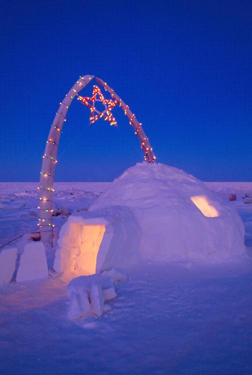 Alaska. Barrow. An igloo and christmas lights adorn whale bones.