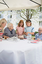 Children cutting cake on dining table, Bavaria, Germany