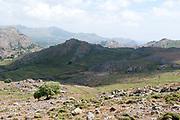 landscape, scrubland & farmland, Habitat for a number of migrant birds through Europe, Leszos, Greece , lesbos