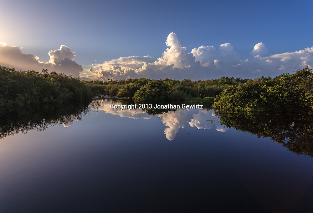 Morning at Taylor Slough on the Anhinga Trail in Everglades National Park, Florida. WATERMARKS WILL NOT APPEAR ON PRINTS OR LICENSED IMAGES.