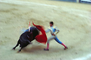 Bull Fighter in action