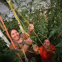 Food security in Nebaj