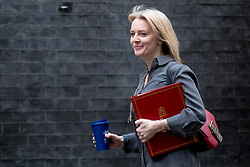 © Licensed to London News Pictures. 12/03/2019. London, UK. Chief Secretary to the Treasury Elizabeth Truss arrives on Downing Street for a meeting of the Cabinet. MPs will get a second meaningful vote on Prime Minister Theresa May's Brexit deal this evening. Photo credit: Rob Pinney/LNP