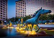 Mustangs at Las Colinas is a bronze sculpture by Robert Glen, that decorates Williams Square in Las Colinas in Irving, Texas. It is said to be the largest equestrian sculpture in the world.<br /> The sculpture commemorates the wild mustangs that were historically important inhabitants of much of Texas. It portrays a group at 1.5 times life size, running through a watercourse, with fountains giving the effect of water splashed by the animals' hooves. The horses are intended to represent the drive, initiative and unfettered lifestyle that were fundamental to the state in its pioneer days.<br /> The work was commissioned in 1976 and installed in 1984. SWA Group's design created a shallow watercourse extending 400 feet (130 m) from northeast to southwest across Williams Square, a gently sloping granite-paved open space about 300 feet (110 m) square. The plaza setting for the sculpture won a National Honor Award from the American Society of Landscape Architects.