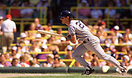 CHICAGO - 1986:  Don Mattingly of the New York Yankees bats during an MLB game versus the Chicago White Sox during the 1986 season at Comiskey Park in Chicago, Illinois. (Photo by Ron Vesely) Subject:   Don Mattingly