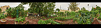 Backyard Urban Garden 360 Panorama in St Petersburg.  Composite of 73 images taken with a Fuji X-T1 camera and 16 mm f/1.4 lens (ISO 200, 16 mm, f/16, 1/15 sec). Raw images processed with Capture One Pro, and Autopano Giga Pro.