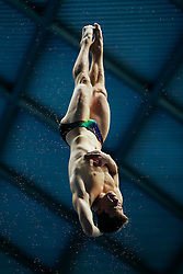 Freddie Woodward from City of Sheffield Diving Club dives from the 3m Springboard - Mandatory byline: Rogan Thomson/JMP - 11/06/2016 - DIVING - Ponds Forge - Sheffield, England - British Diving Championships 2016 Day 2.