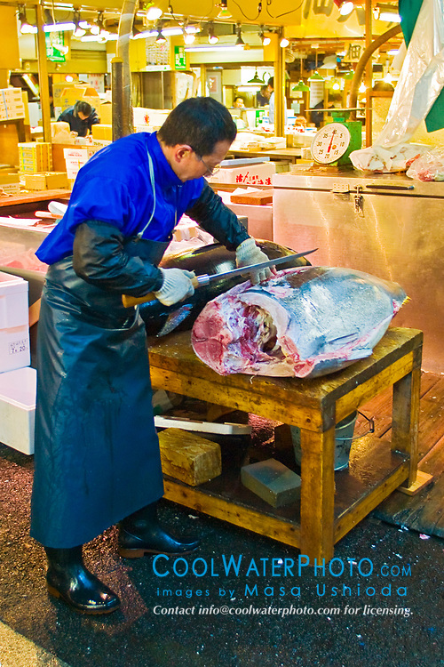 wholesaler, carefully filleting raw bluefin tunas with specially designed Japanese tuna knives, Thunnus sp., Tsukiji Fish Market or Tokyo Metropolitan Central Wholesale Market, the world's largest fish market, hadling over 2, 500 tons and over 400 different kind of fresh sea food per day