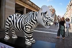 "**CAPTION CORRECTION - Rhino statues are 750mm tall, not 750cm tall, as stated in previous captions**<br /> © Licensed to London News Pictures. 20/08/2018. LONDON, UK. Tourists view ""Going, Going, Gone"", a rhino painted by Mauro Perucchetti, in Covent Garden.  At 750mm tall and weighing 300 kg, each rhino has been specially embellished by an internationally renowned artist.  21 rhinos are in place at a popular location in central London, forming the Tusk Rhino Trail, until World Rhino Day on 22 September to raise awareness of the severe threat of poaching to the species' survival.  They will then be auctioned by Christie's on 9 October to raise funds for the Tusk animal conservation charity.  Photo credit: Stephen Chung/LNP"