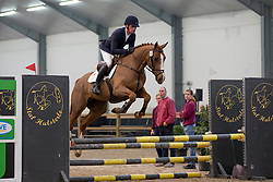 090, Django Ste Hermelle<br /> 3de phase BWP Keuring - Stal Hulsterlo - Meerdonk 2016<br /> © Hippo Foto - Dirk Caremans<br /> 17/03/16