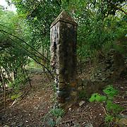 Leinster Bay plantation ruin