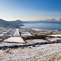 Panoramic Winter Landscape overlooking Ballinskelligs Bay with Skellig Michael, County Kerry, Ireland
