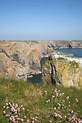 Stack Rocks, Castlemartin Pembrokeshire coast national park, Wales