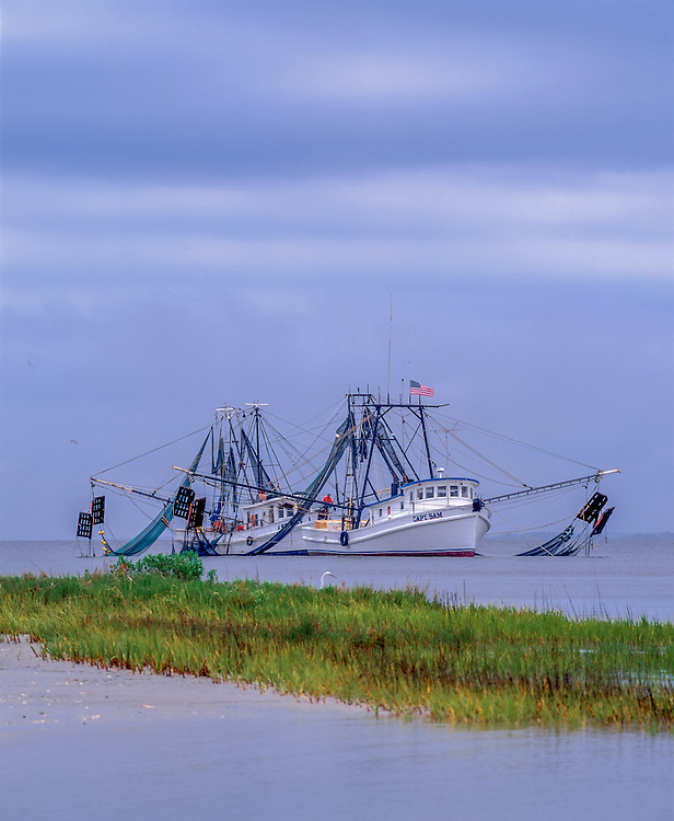Two shrimp boats at work, with Great Egret & grasses in foreground, Jekyll Island, GA