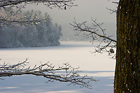 """""""Fresh Snow"""".An early morning winter view of frozen Walden Pond and surrounding forest covered in fresh snow after a storm."""