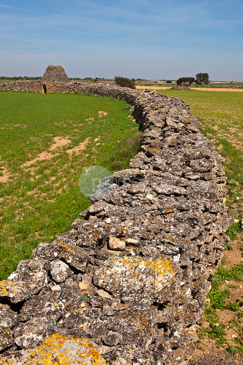 Paisaje de La Mancha con Chozo o cuco de piedra tipico. Minaya. Albacete ©Antonio Real Hurtado / PILAR REVILLA