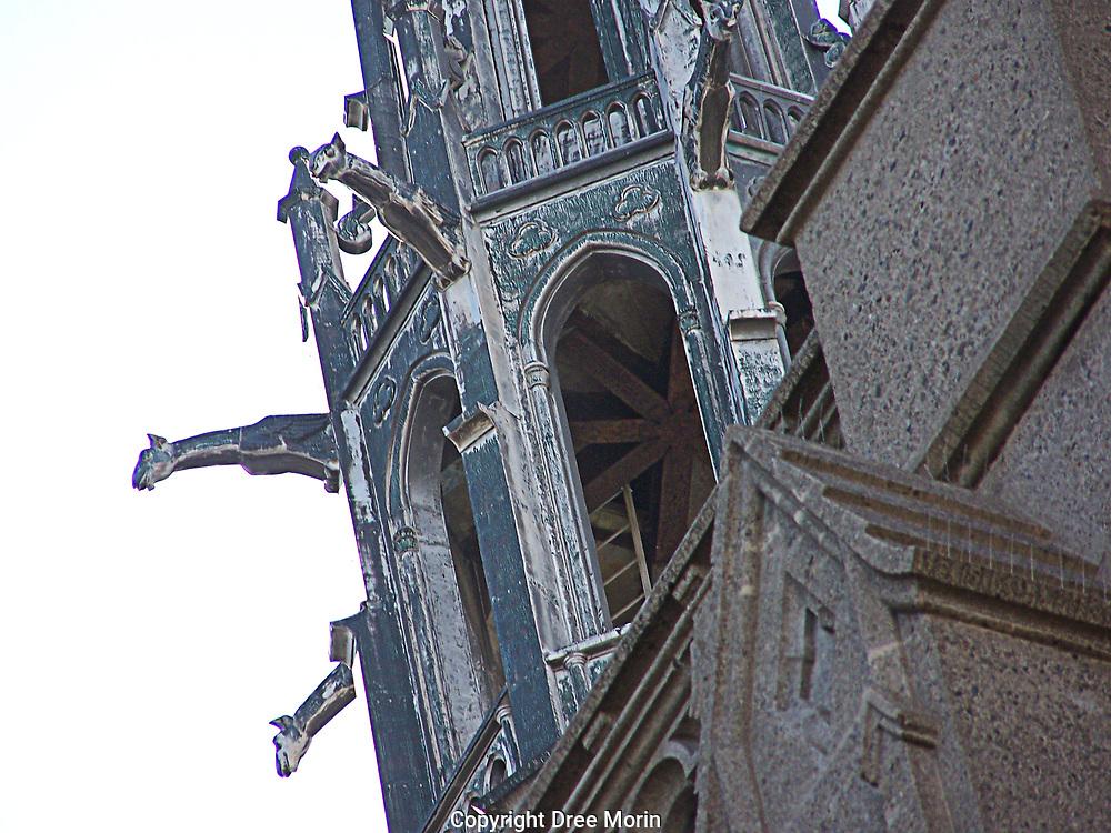 Gargoyles of Grace Cathedral, San Francisco, CA