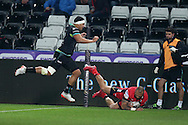 William Helu of Edinburgh Rugby dives over to score his teams 1st try. Guinness Pro12 rugby match, Ospreys v Edinburgh Rugby at the Liberty Stadium in Swansea, South Wales on Friday 2nd December 2016.<br /> pic by Andrew Orchard, Andrew Orchard sports photography.