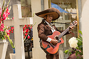 A mariachi musician plays at a gravesite at the San Miguel cemetery during the Day of the Dead Festival known in Spanish as Día de Muertos in Oaxaca, Mexico.