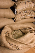raw coffee beans after arriving in the United States for roasting in boutique coffee shops.