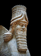 Stone statue of a winged bull. From facade m, door K,  Inv AO 19857 from Dur Sharrukin the palace of Assyrian king Sargon II at Khorsabad, 713-706 BC.  Louvre Museum Room 4 , Paris .<br /> <br /> If you prefer to buy from our ALAMY PHOTO LIBRARY  Collection visit : https://www.alamy.com/portfolio/paul-williams-funkystock/ancient-assyria-antiquities.html  Refine search by adding background colour, place, subject, museum etc into the LOWER SEARCH WITHIN GALLERY box to <br /> <br /> Visit our ANCIENT ASSYRIAN PHOTO COLLECTIONS for more photos to download or buy as wall art prints https://funkystock.photoshelter.com/gallery-collection/Ancient-Assyrian-Art-Artefacts-Antiquities-Historic-Sites-Pictures-Images-of/C0000cjRqQyJjLag