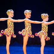 2020, Denise Walker Dance Academy
