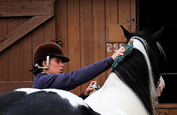 © Licensed to London News Pictures.14/07/15<br /> Harrogate, UK. <br /> <br /> A horse is prepared ahead of an event on the opening day of the Great Yorkshire Show.  <br /> <br /> England's premier agricultural show opened it's gates today for the start of three days of showcasing the best in British farming and the countryside.<br /> <br /> The event, which attracts over 130,000 visitors each year displays the cream of the country's livestock and offers numerous displays and events giving the chance for visitors to see many different countryside activities.<br /> <br /> Photo credit : Ian Forsyth/LNP