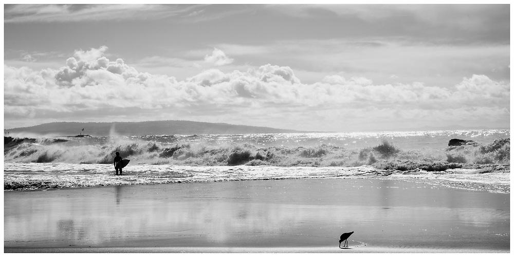 LA Noir: Venice Beach Surfer