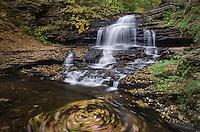 Onondaga Falls, Ricketts Glen Pennsylvania
