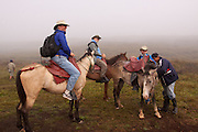 Riders preparing to ride the trail to the volcanic crater of Sierra Negra on Isabela Island, Galapagos Archipelago - Ecuador.