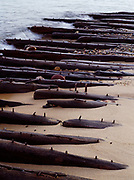 Shipwreck of Mary  Jarecki, a wooden bulk freighter hauling iron ore that wrecked near Au Sable point on July 4, 1883.  Long oak keelson studded with iron treenails visible along shore of Lake Superior at Twelvemile Beach, Pictured Rocks National Lakeshore, Upper Peninsula of Michigan.