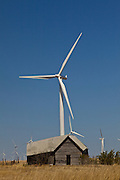 A farmhouse next to wind turbines generating electrical power at Horse Hollow Wind Farm, Nolan county, Texas the world's largest wind power project.