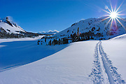 Sun flair over ski tracks below Tioga Pass, Inyo National Forest, Sierra Nevada Mountains, California USA