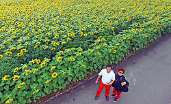SHENYANG, Sept. 12, 2016 (Xinhua) -- Tourists enjoy themselves near sunflowers at a park in Heping District in Shenyang, capital of northeast China's Liaoning Province, Sept. 12, 2016. (Xinhua/Yang Qing) (yxb) (Credit Image: © Yang Qing/Xinhua via ZUMA Wire)